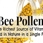 11 Amazing Health Benefits Of Bee Pollen