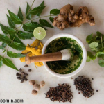 12 Interesting Facts About Herbs That You Need To Know