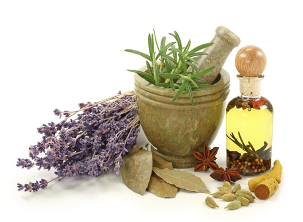 Herbs For Reducing Cholesterol Naturally