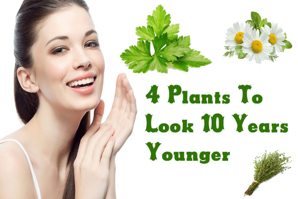 Plants To Look 10 Years Younger