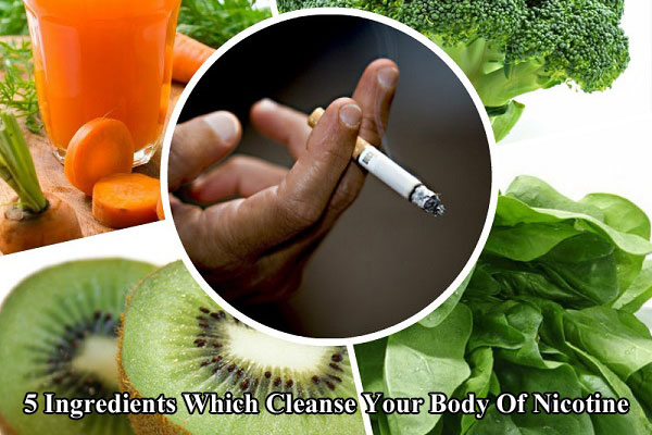 Cleanse Your Body Of Nicotine