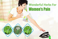 Wonderful Herbs For Women