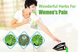 Wonderful Herbs For Women
