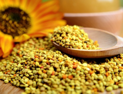 Bee Pollen-The Super Food of Gods. The Miracle for Your Body