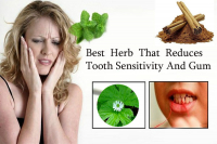 Best Herb That Reduces Tooth Sensitivity And Gum