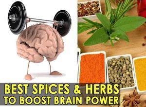 brain herbs