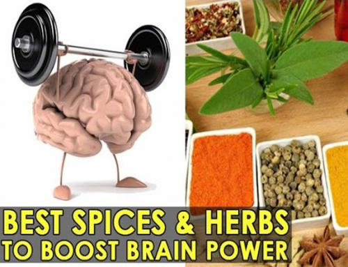 Boost Your Brain Function With This Common Herb