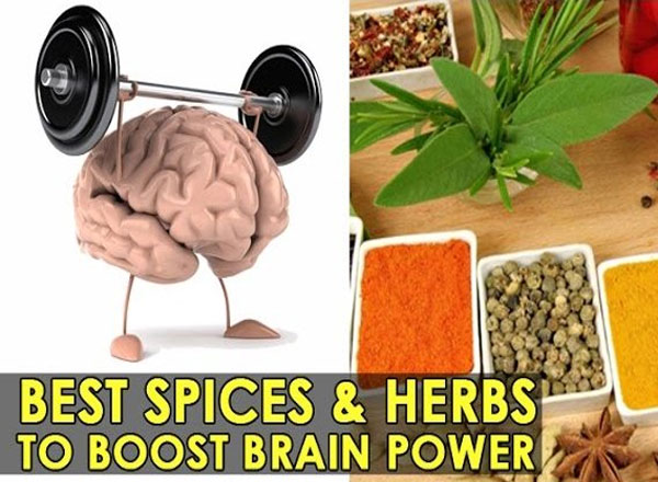 Best foods for increasing brain power photo 10