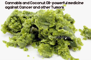 Cannabis and Coconut-Oil
