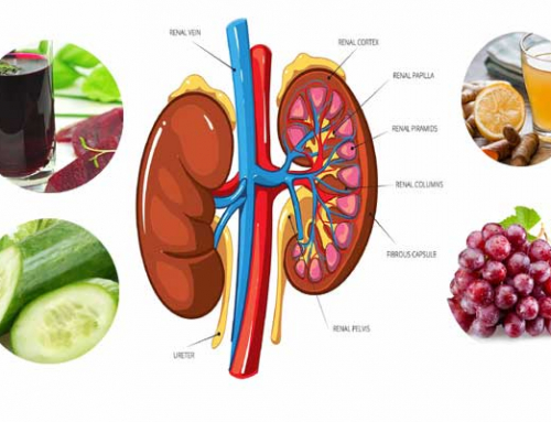 Detox Your Kidneys for a Better Well Being