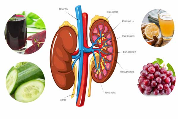 Detox-Kidneys