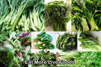 Eat-more-live-foods