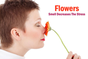 Flowers Smell