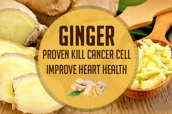 Ginger Is A Powerful Spice That Kills Common Types Of Cancer