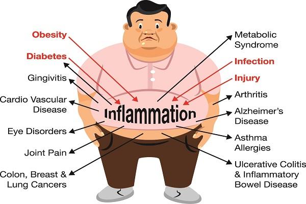 Goji berries against chronic inflammation