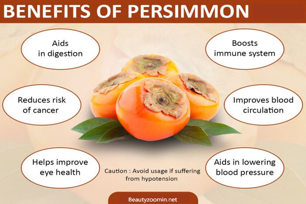 Health Benefit of Persimmon Fruit for Preventing Many Diseases