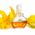 Top 5 Health Benefits Of Ylang Ylang Oil