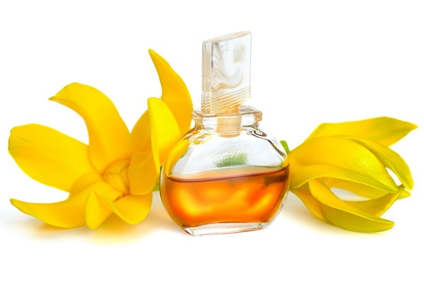 ylang ylang oil benefits