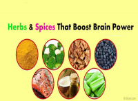 BRAIN POWER WITH HERBS