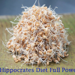Hippocrates Diet and It's Full Power – Transform Your Body in 7 Years