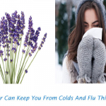 5 Secrets On How Lavender Can Keep You From Colds And Flu This Winter