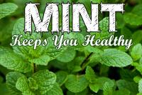 Mint keeps you healthy