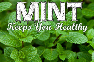 Mint keeps you healthy