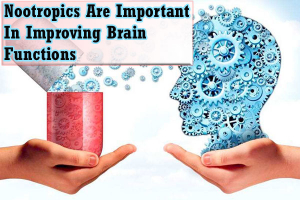 How Nootropics Are Important In Improving Brain Functions