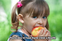 Pesticides In Food