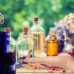 How to Prepare Healthy Tinctures from Preferable Plants and Right at Your Home Yourself