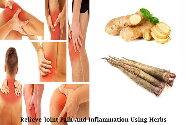 How To Naturally Relieve Joint Pain And Inflammation Using. Best Safaris In Tanzania Isp Hosting Services. Hardwood Floors Refinished Mha Degree Online. Certainteed Roofing Products. Storage Units Pinellas Park Fl. Rockford College Illinois Hadoop Tutorial Pdf. Proton Therapy Breast Cancer. San Joaquin Hospital Bakersfield Ca. Overweight And Knee Pain Movers Ft Lauderdale