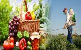 Remove Pesticides