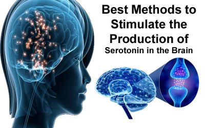 Serotonin in the Brain