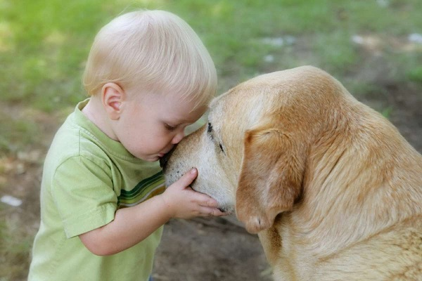 The pets make children kinder