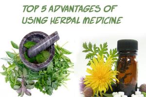 Using Herbal Medicine