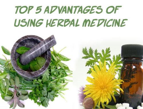 Top 5 Advantages of Using Herbal Medicine