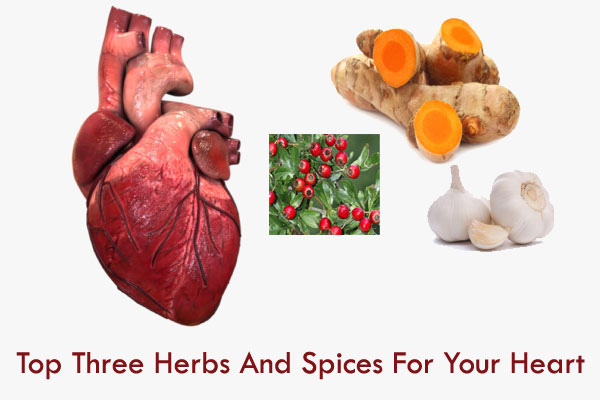 top herbs for heart