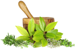 What Is Ayurveda