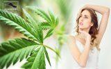 cannabis benefits your skin