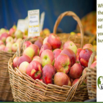 What Are The Least Contaminated Fruits You Can Buy?