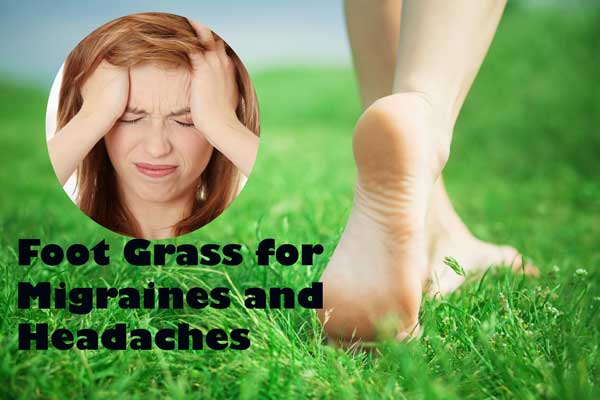foot grass for headache
