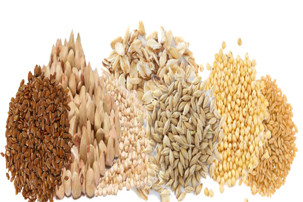 grain and seeds