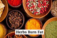 herbs burn fat