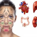 The Map Of Your Face. What Does It Say About Your Health?