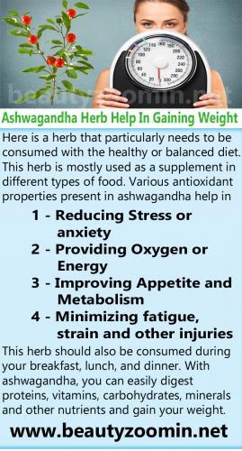 Ashwagandha Herb Help In Gaining Weight