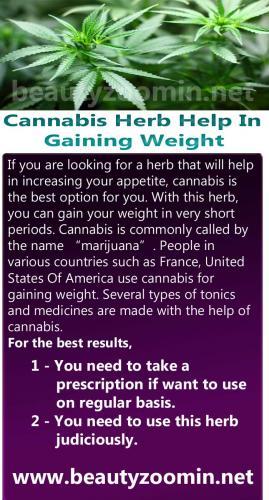 Cannabis Herb Help In Gaining Weight