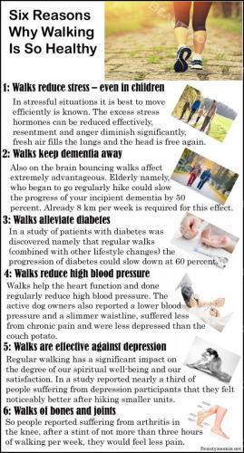 Nine Reasons Why Walking Is So Healthy