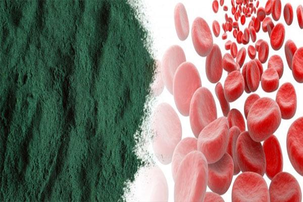 powerful blood purifier