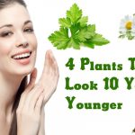4 Plants To Look 10 Years Younger