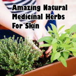 Amazing Natural Medicinal Herbs For Skin